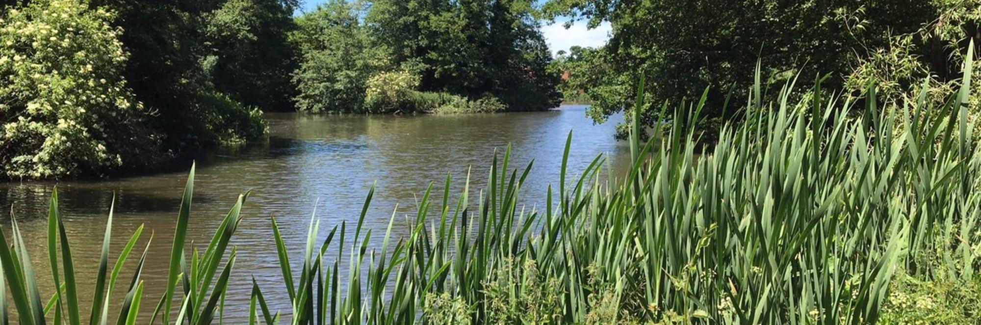 Flanchford Farm House & Lakes